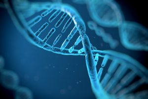 Dna deoxyribonucleic acid the genetic geometry blueprint found dna deoxyribonucleic acid the genetic geometry blueprint found in all living things malvernweather Choice Image